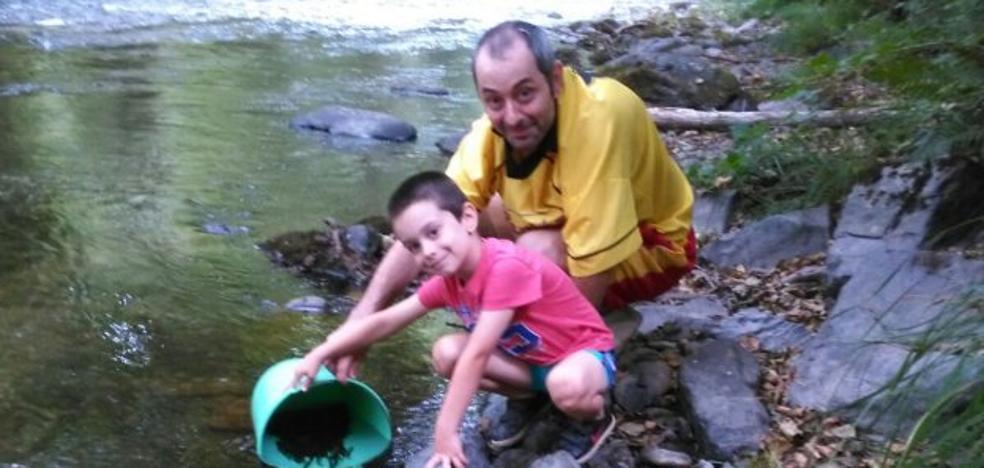 Los pescadores se afanan en repoblar los ríos tras el descenso de capturas