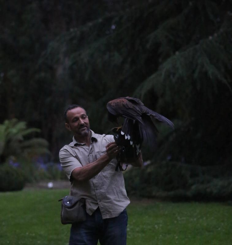 Las aves rapaces impresionan en el Botánico