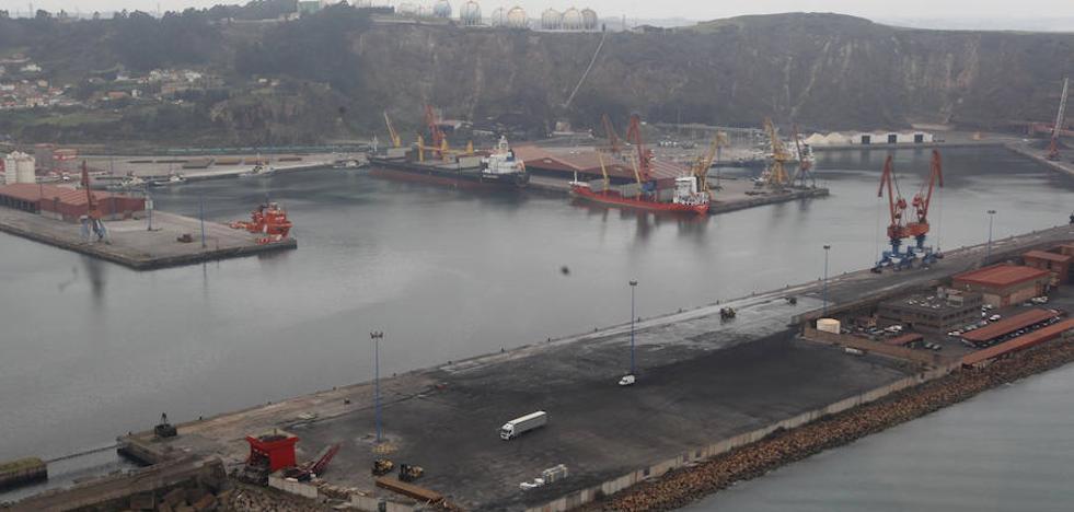 «'A ver la ballena' no encareció la obra de ampliación portuaria»