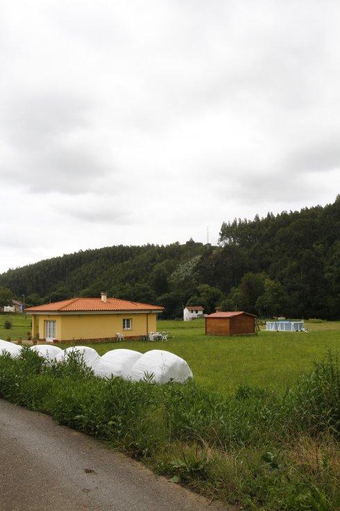 La perrera podría ubicarse en esta zona boscosa situada tras las viviendas.