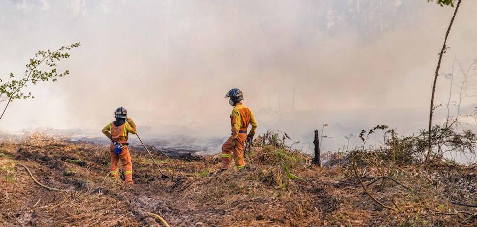 Los bomberos del SEPA intervinieron en 161 incendios forestales en julio