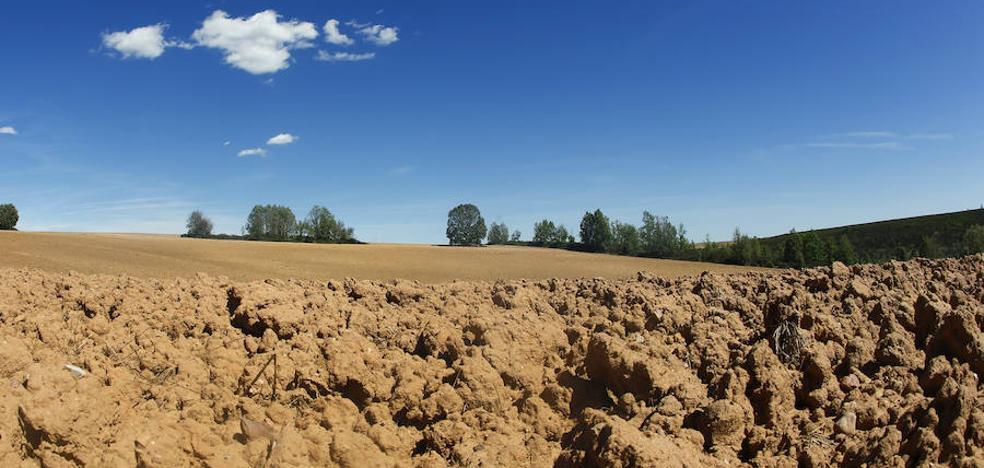 Asturias, una de las regiones más afectadas por la sequía a pesar de la inestabilidad del verano