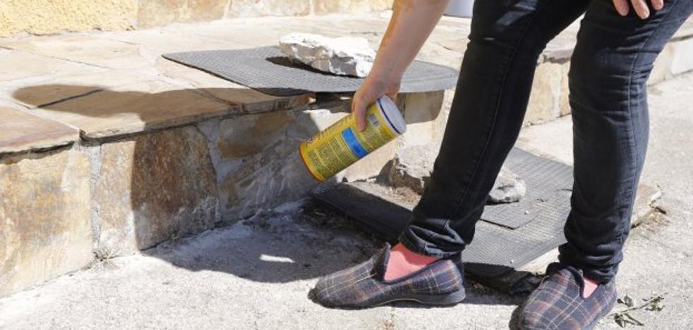 El Ayuntamiento y los vecinos de Veneros luchan para controlar una plaga de pulgas