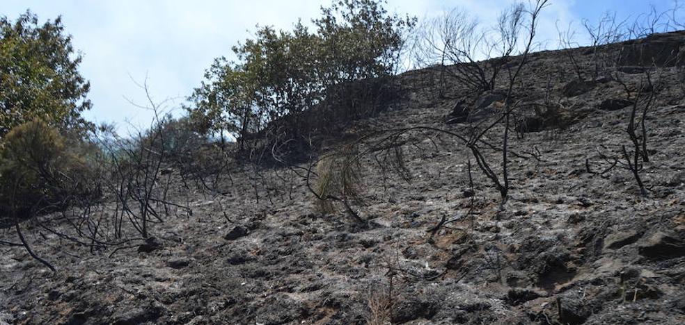 Se intensifican las labores de extinción en Cangas del Narcea