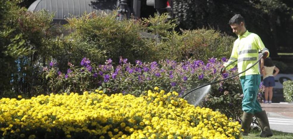 El Ayuntamiento recorta el riego otro 60% y el baldeo un 20% ante la sequía
