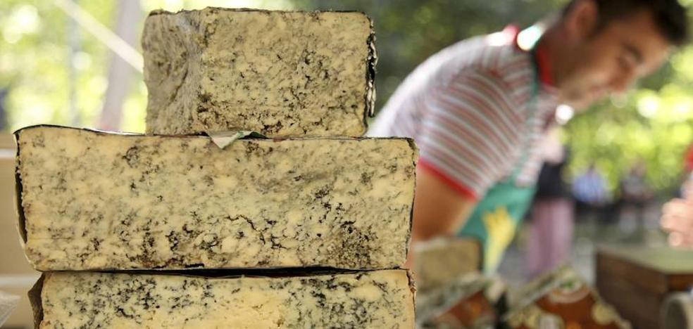 Cabrales busca su mejor queso