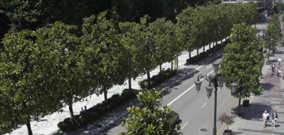 La redacción del proyecto para la mejora del entorno del Campo costará 199.245 euros