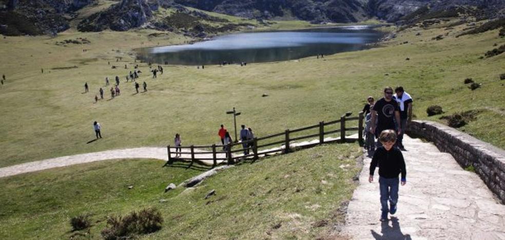 La Junta aprueba el proyecto del tren cremallera a los Lagos de Covadonga