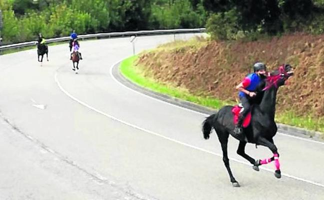 Treinta caballos participan en la primera carrera sobre asfalto en Tineo