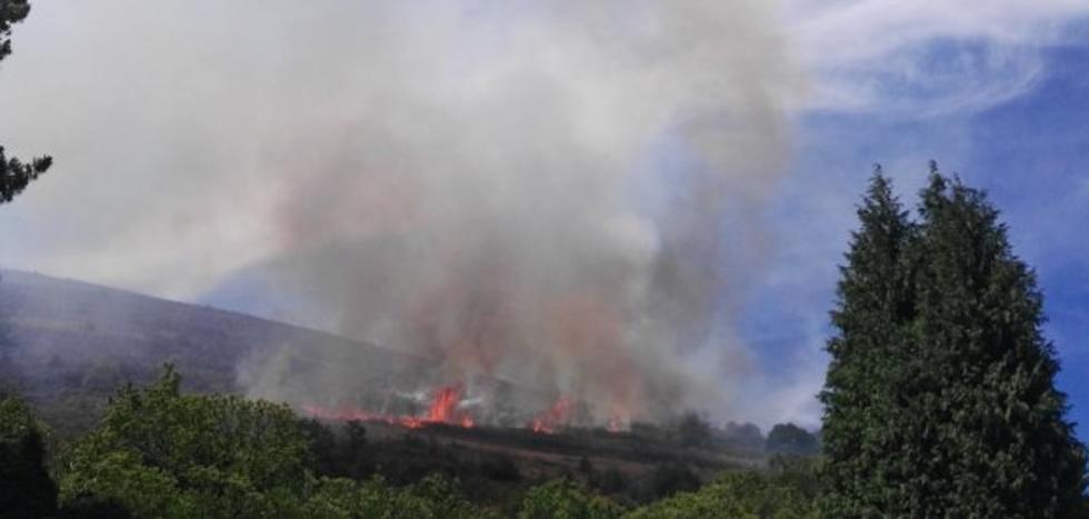 Asturias sufrió en agosto ocho incendios forestales cada día