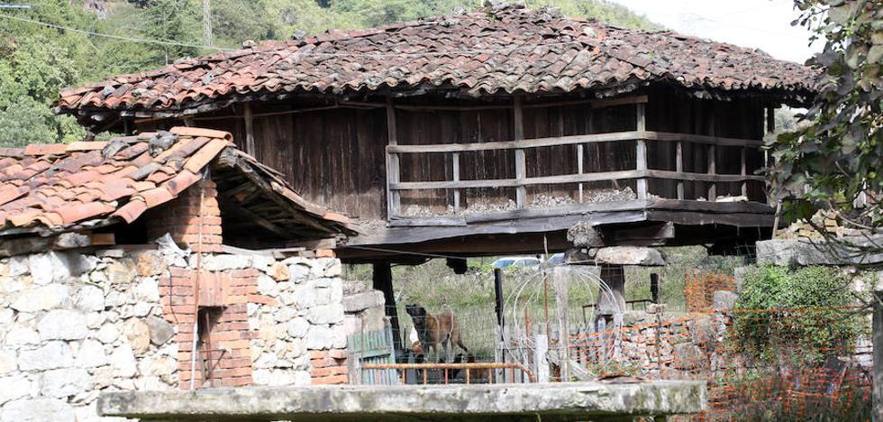 Madera centenaria en Bueño