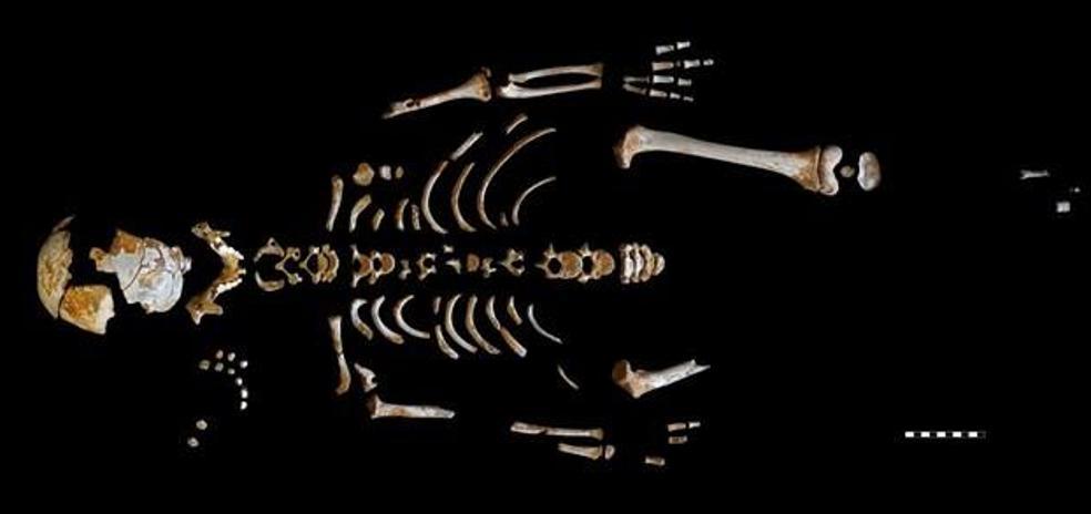 Los secretos que guardaba el niño neandertal de El Sidrón