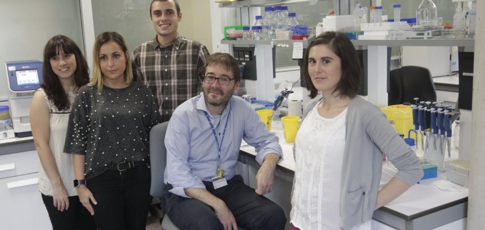 Un equipo asturiano descubre cómo curar pulmones dañados por la ventilación mecánica