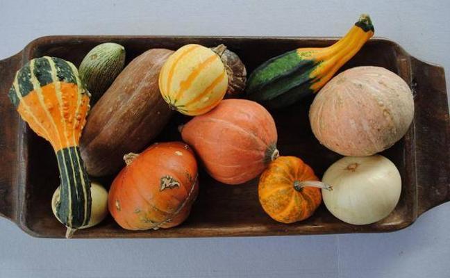 Ocho frutas y verduras ideales para el otoño