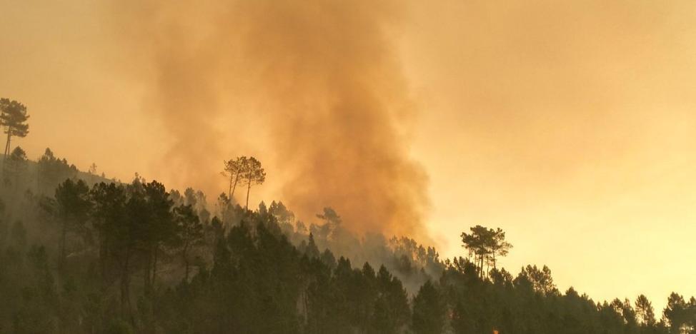 Controlado el incendio forestal de Ibias que permanece activo desde el lunes