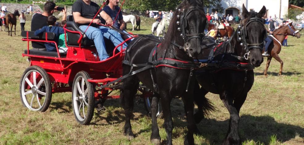 Más de 200 equinos en la Feria Caballar de Posada, celebrada en La Rectoral