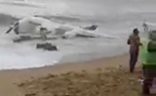 Cuatro muertos al estrellarse un avión de carga en Costa de Marfil