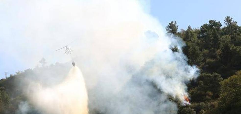 Identifican a un vecino de Oviedo de 84 años como presunto autor de un incendio en León