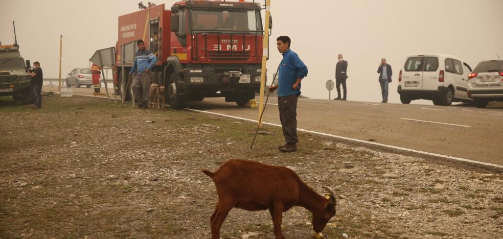El campo se defiende y atribuye el fuego a la falta de limpieza del monte