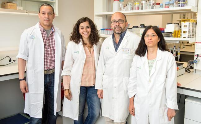 Científicos españoles descubren una molécula que servirá para luchar contra la esclerosis múltiple
