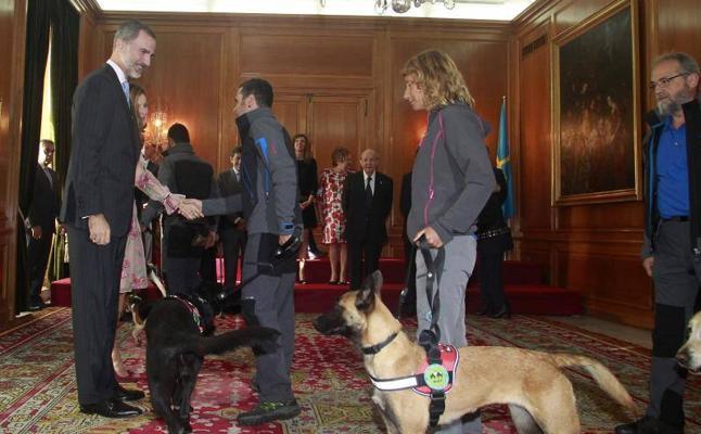 Reyes reciben a las Medallas de Asturias, entre ellos los perros de rescate