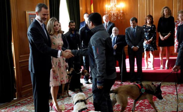 Premios Princesa de Asturias: Los Reyes reciben en audiencia a los galardonados con las Medallas de Asturias