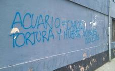 Aparece una pintada contra el Acuario de Gijón