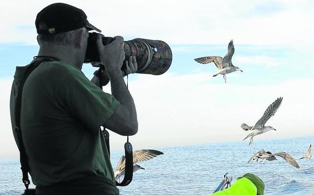 Buscando amigos con alas