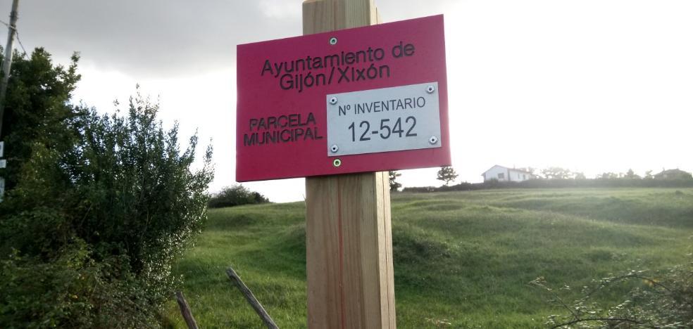 El alquiler de parcelas municipales para uso agrario, por un máximo de 20 años