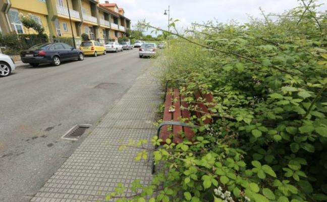 El Ayuntamiento inicia un plan de choque de limpieza de fincas privadas en el concejo