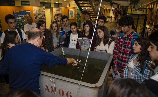 El Oceanográfico muestra su trabajo a los gijoneses