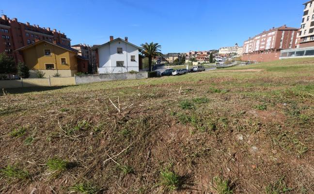 Los segundos huertos urbanos de Avilés se cultivarán en Valgranda