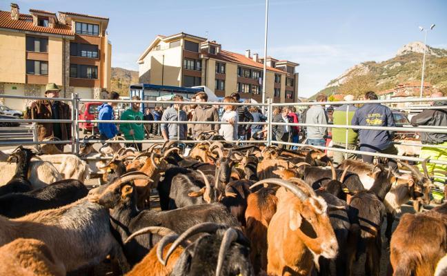 «Infraestructuras traslada la brigada de Cabrales a Llanes», denuncia Foro