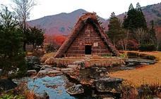Gifu, carne y aguas de impacto