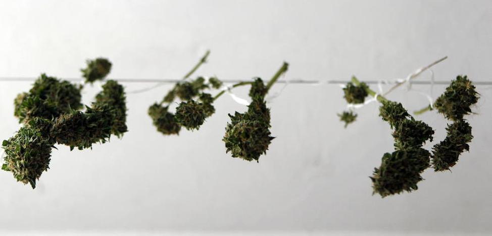 Tres detenidos en Oviedo por portar 12 gramos de cocaína y 107 de marihuana