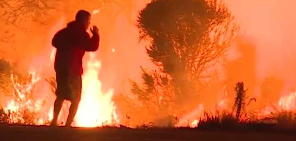 Incendios en California: Arriesga su vida para salvar a un conejo de las llamas