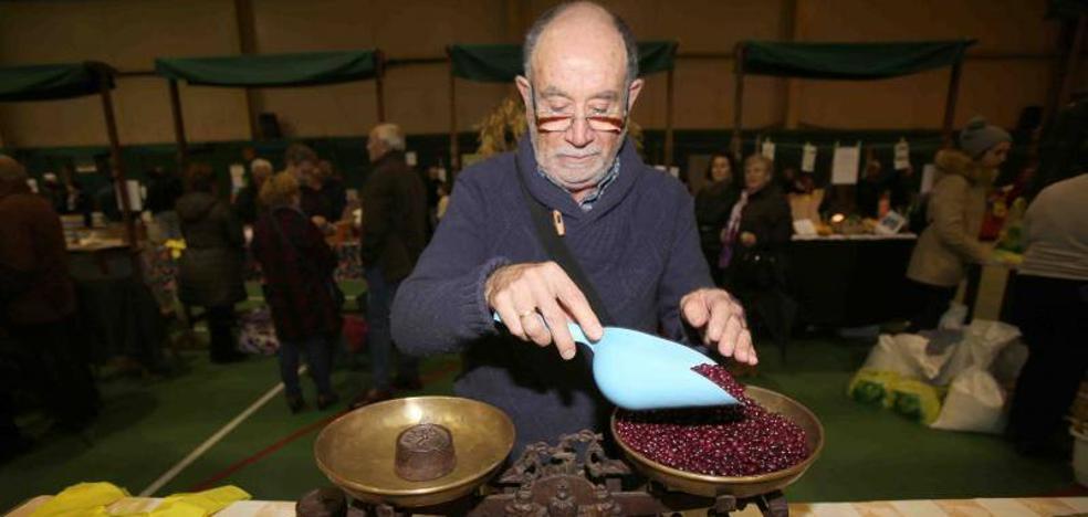 Once productores ponen a la venta más de 800 kilos de fabes en Colunga