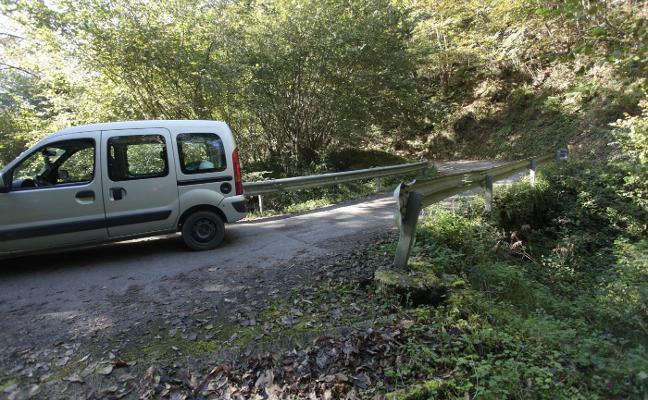 Infraestructuras arreglará la carretera de Llonín, en Peñamellera Alta