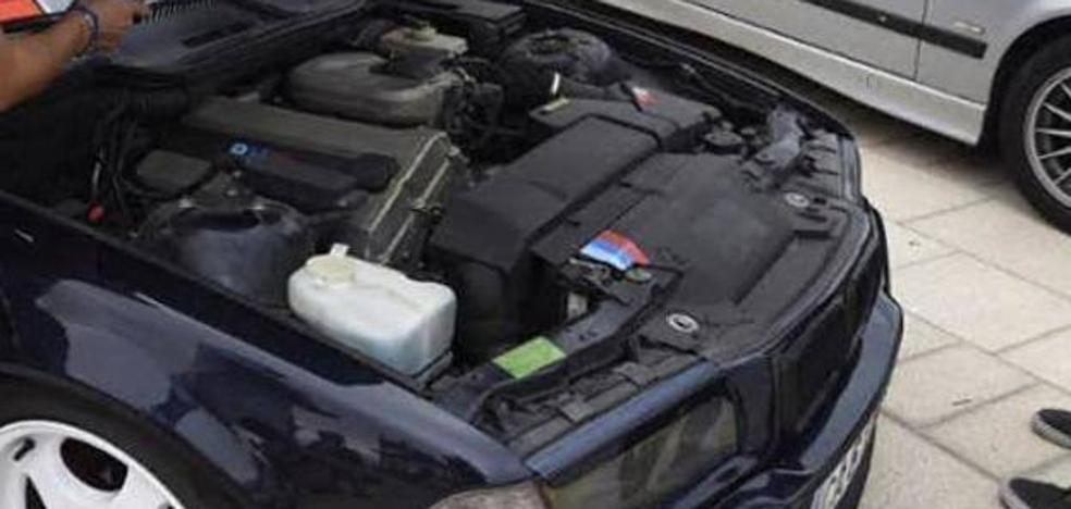 Un golpe a tiempo en el capó del coche puede salvar una vida