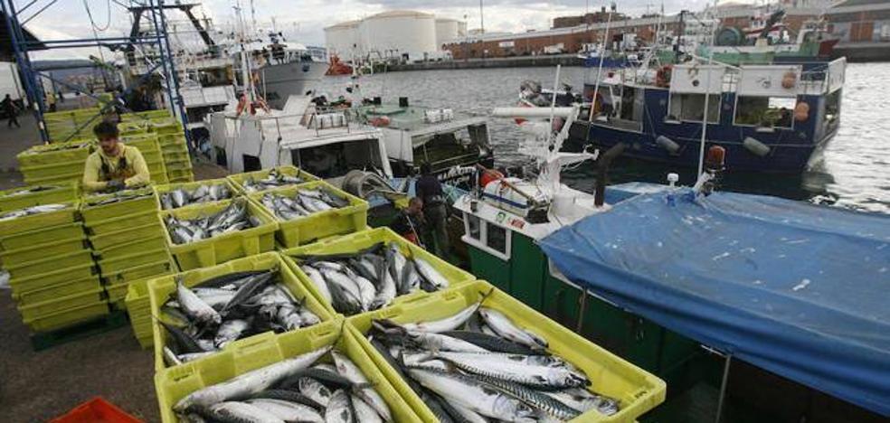Los ministros de Pesca rechazan la propuesta inicial de cuotas para 2018