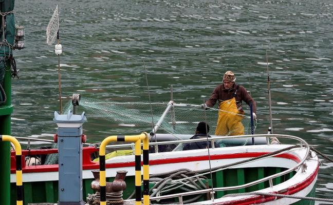 El recorte de cupos de la merluza y la xarda pone en peligro la flota del litoral