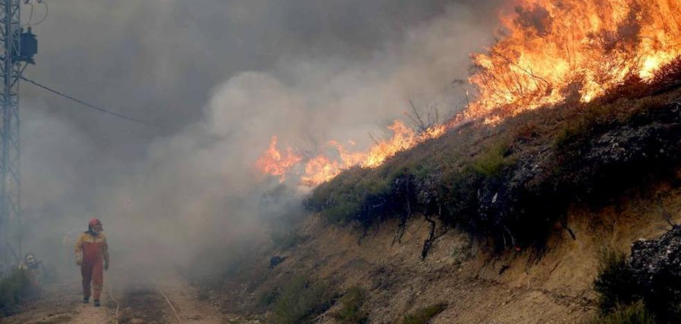El Principado invierte 149.000 euros en animar a denunciar a los incendiarios