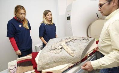 Escanean huesos de dinosaurios en Gijón
