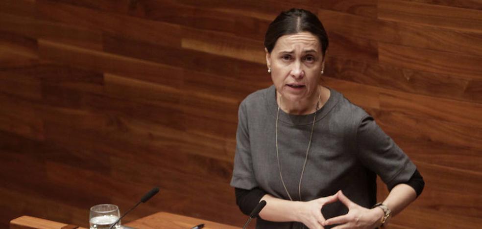 «El Gobierno buscará acuerdos para que Asturias se resienta de la prórroga lo menos posible»