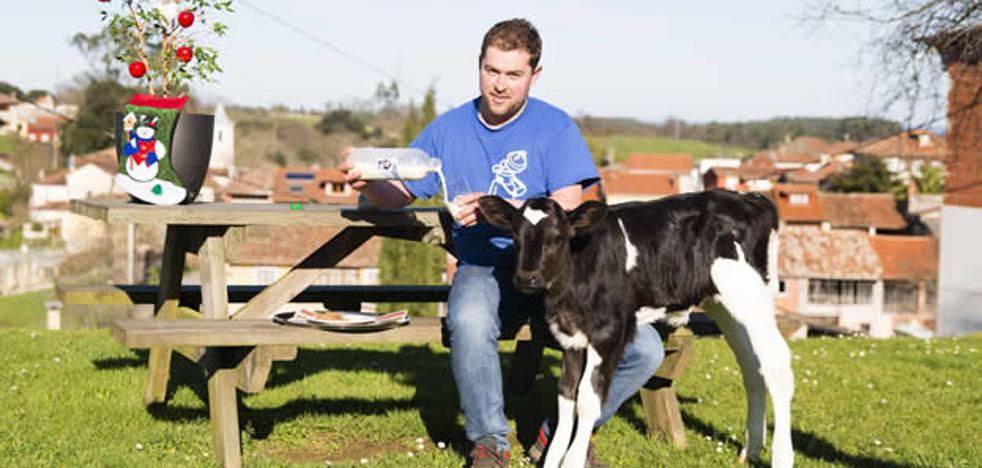 Cuadras con domótica: el futuro llega a las ganaderías