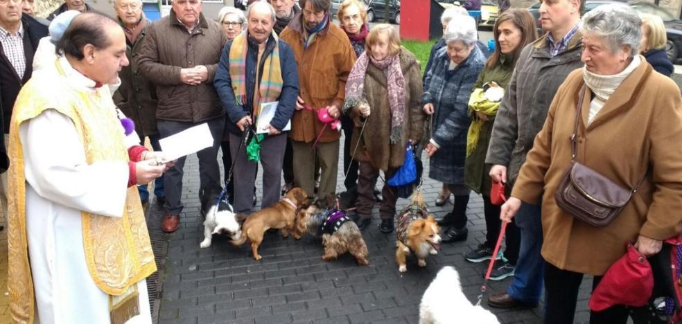 La Hermandad de San Antón anima a participar en la bendición de mascotas de Piloña