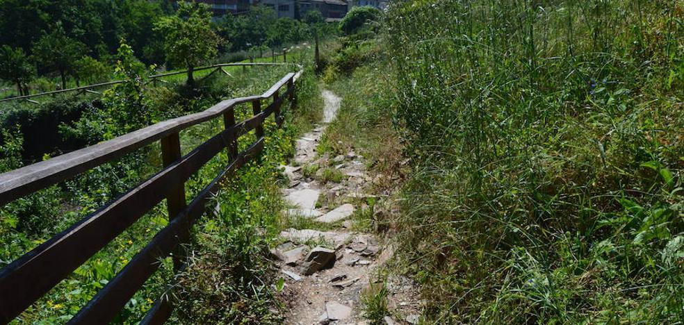 Foro exige al Ayuntamiento de Cangas que mantenga el Paseo del Vino en «condiciones óptimas»