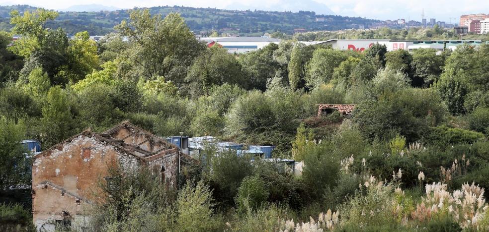 La asociación de vecinos de Paredes pide paralizar el parque metropolitano
