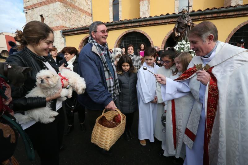 San Antón bendice a las mascotas en Lugones