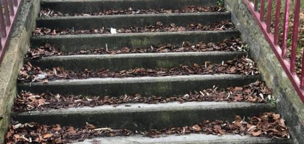 Reclaman la limpieza en los accesos peatronales del colegio El Bosquín